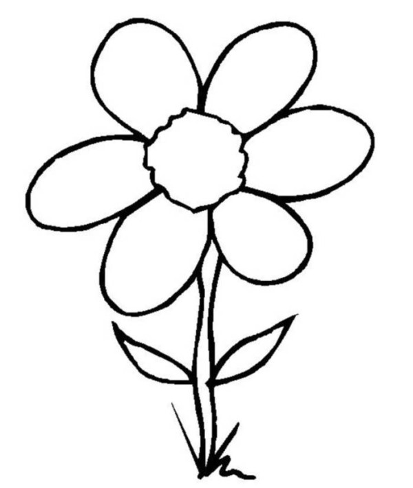 drawing for kids flowers printable editable blank - Kids Simple Drawing